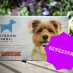 #TestTheMixContest: Win a Wisdom Panel Canine Health DNA Test