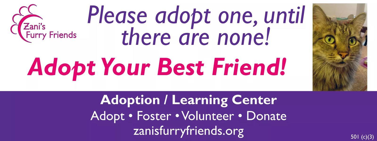 Adoption Center Poster